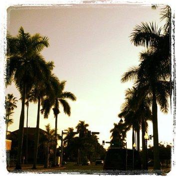 Ft Myers, FL