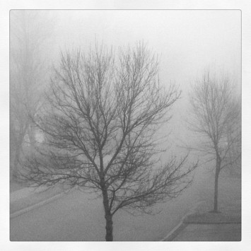 rainy day in VT